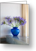 State Flowers Greeting Cards - The Color Blue Greeting Card by Eggers   Photography