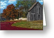 Shack Greeting Cards - The Cranberry Farm Greeting Card by Gina Cormier