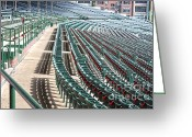 Wrigley Field Greeting Cards - The cupholders are in bloom Greeting Card by David Bearden