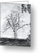 Misty Prints Prints Greeting Cards - The Dead Tree Greeting Card by Paul  Mealey