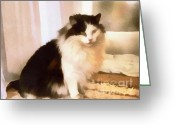 Lapdog Greeting Cards - The domestic cat Greeting Card by Odon Czintos