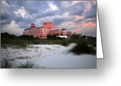 Gulf Of Mexico Greeting Cards - The Don Cesar Greeting Card by David Lee Thompson