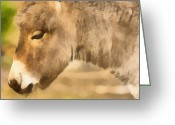 _states Greeting Cards - The donkey portrait Greeting Card by Odon Czintos
