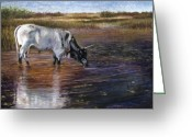 Western Pastels Greeting Cards - The Drink Greeting Card by Susan Jenkins