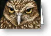 Burrowing Owl Greeting Cards - The Dubious Owl Greeting Card by Pat Erickson
