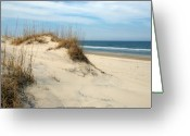 Beach Grass Greeting Cards - The Dunes Greeting Card by Kelvin Booker