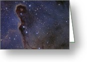 Interstellar Clouds Photo Greeting Cards - The Elephants Trunk Nebula In The Star Greeting Card by Ken Crawford