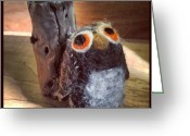 Igdaily Greeting Cards - The Elusive Linty Owl Greeting Card by Adam Romanowicz