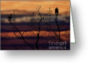 Gerlinde-keating Greeting Cards - The End of the Day Greeting Card by Gerlinde Keating - Keating Associates Inc