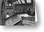 Natural History Greeting Cards - The Escher View Greeting Card by Martin Williams