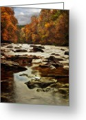 Fall Leaves Photo Greeting Cards - The Fall on the River Avon  Greeting Card by John Farnan