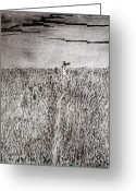 Dusk Reliefs Greeting Cards - The Field Greeting Card by Josean Rivera