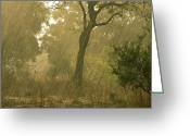 Zambia Photo Greeting Cards - The First Downpour After Six Dry Months Greeting Card by Frans Lanting