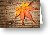 Turning Leaves Greeting Cards - The Five Element Greeting Card by Ulrich Schade