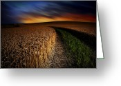 Fire Pastels Greeting Cards - The Forgotten Path Greeting Card by John Chivers