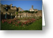 Latium Region Greeting Cards - The Garden Of The Vestal Virgins Greeting Card by Taylor S. Kennedy