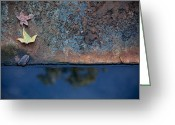 Steven Gray Greeting Cards - The Garden Pond Greeting Card by Steven Gray
