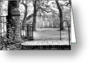 Low Country Greeting Cards - The Gates of the Old Sheldon Church Greeting Card by Scott Hansen