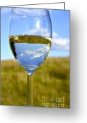 Plenty Greeting Cards - The Glass is Half Full Greeting Card by Thomas R Fletcher