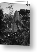 Banana Tree Greeting Cards - The grays are having a party... Greeting Card by Kathi Shotwell