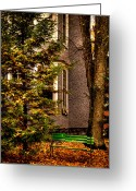 Fall Colors Greeting Cards - The Green Bench Greeting Card by David Patterson