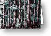 Hatch Greeting Cards - The Grove At Sand Creek Greeting Card by Teddy Campagna