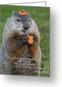 Groundhog Greeting Cards - The heart earns by trying Greeting Card by Paul W Faust -  Impressions of Light