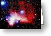 Horsehead Greeting Cards - The Horsehead Nebula Greeting Card by Celestial Image Co.