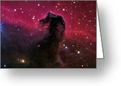 Horsehead Greeting Cards - The Horsehead Nebula Greeting Card by R Jay GaBany