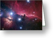 Molecular Clouds Greeting Cards - The Horsehead Nebula Greeting Card by Robert Gendler