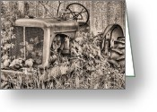 Fauquier County Greeting Cards - The Ivy League BW Greeting Card by JC Findley