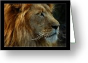 Lion Greeting Cards - The King Greeting Card by Ricky Barnard
