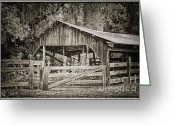 Wooden Fence Greeting Cards - The Last Barn Greeting Card by Joan Carroll