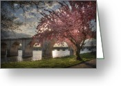 Harrisburg Greeting Cards - The Last Glimmer Greeting Card by Lori Deiter