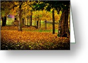 Folage Greeting Cards - The Leaves of Autumn Greeting Card by David Patterson