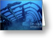 Misfortune Greeting Cards - The lEspignole shipwreck Greeting Card by Sami Sarkis