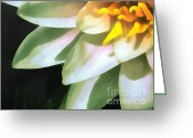 Blue_tit Greeting Cards - The lily flower Greeting Card by Odon Czintos