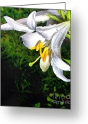 Gold Lame Painting Greeting Cards - The lily Greeting Card by Odon Czintos