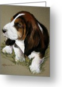 Dogs Pastels Greeting Cards - The Little Basset Greeting Card by Mary Sparrow Smith