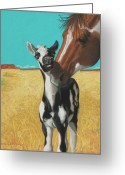 White White Horse Pastels Greeting Cards - The Little Mustang Greeting Card by Tracy L Teeter