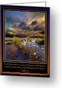 Natural Light Greeting Cards - The Little Things Greeting Card by Phil Koch