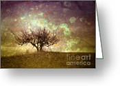 Okanagan Greeting Cards - The Lone Tree Greeting Card by Tara Turner