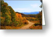 Aspen Trees Greeting Cards - The Long and Winding Road Greeting Card by Dana Kern