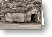 White Barns Greeting Cards - The Long Barn Greeting Card by JC Findley