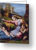 Tiara Greeting Cards - The Madonna of the Veil Greeting Card by Raphael