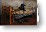 Dog Photographs Greeting Cards - The Masters Shoes Greeting Card by Robin-Lee Vieira