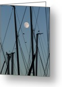 Leisure Activity Greeting Cards - The Masts Of Sailboats, Dawn, Moon In Background Greeting Card by Gerhard Fitzthum