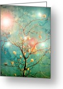 Okanagan Greeting Cards - The Memory of Dreams Greeting Card by Tara Turner
