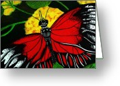 Insect Drawings Greeting Cards - The monarch Greeting Card by Ramneek Narang