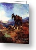 Open Range Greeting Cards - The Morning Shower Greeting Card by Pg Reproductions